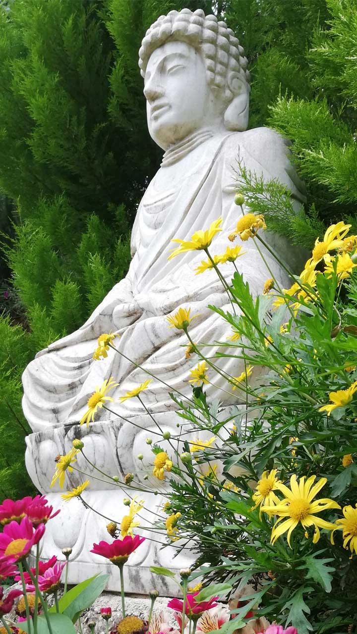 Βούδας - Κήπος Διαλογισμού   Ζέλιος ΓΗ