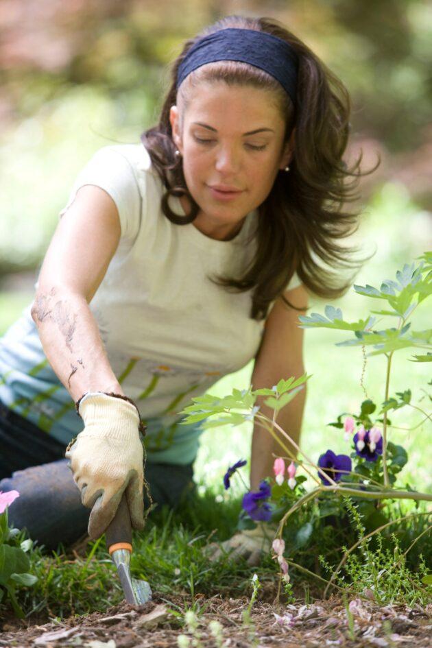 Η δραστηριότητα στη φύση που έχει ευεργετικές ιδιότητες στο σώμα και το πνεύμα 9