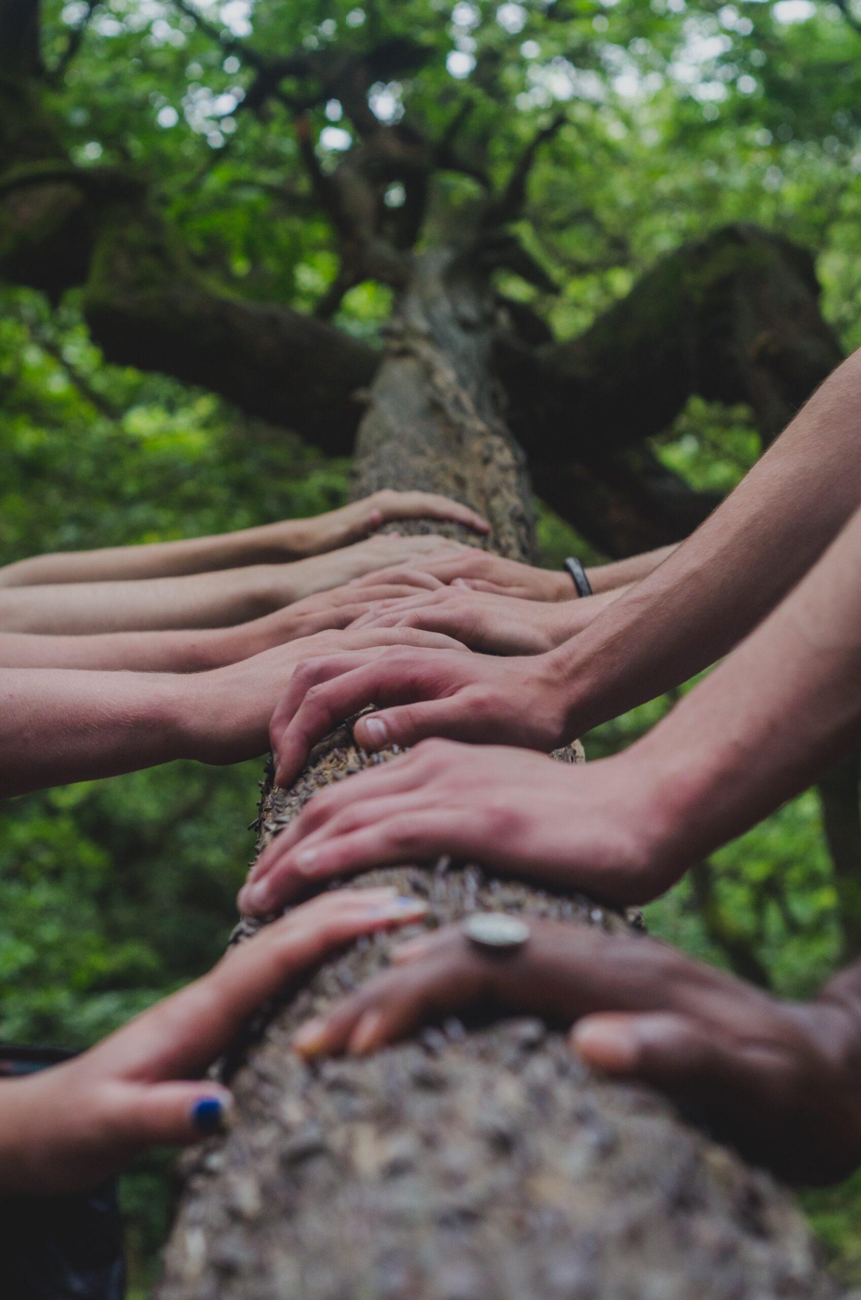 Η επαφή με τη φύση κάνει τους ανθρώπους πιο αυθεντικούς 1