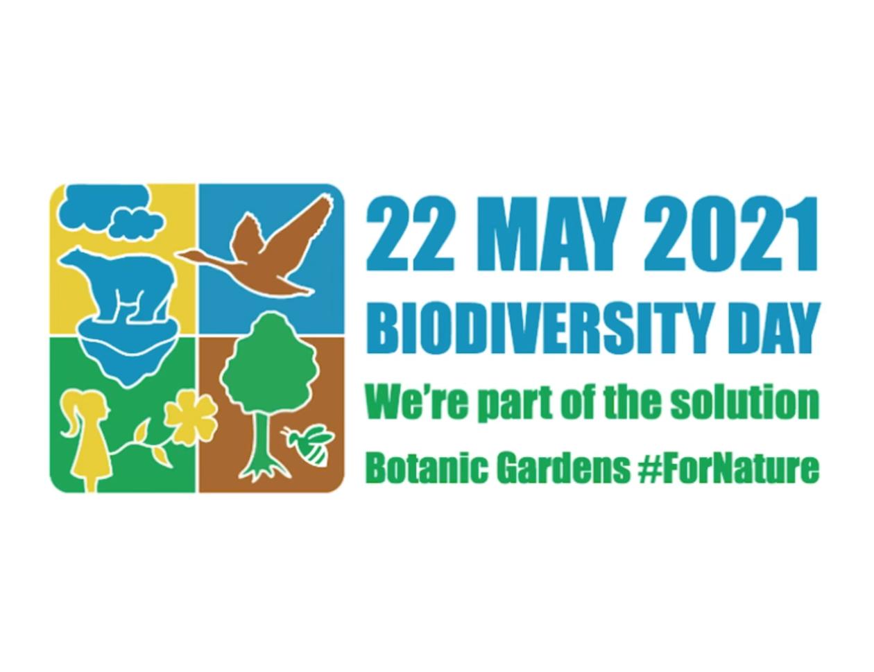 22 Μαΐου – Παγκόσμια Ημέρα Βιοποικιλότητας – Happy International Biodiversity Day 5