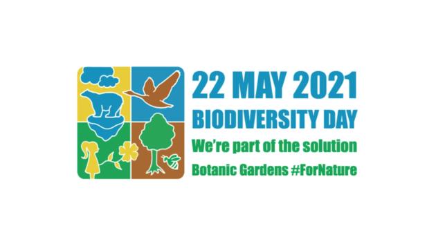 22 Μαΐου – Παγκόσμια Ημέρα Βιοποικιλότητας – Happy International Biodiversity Day 9