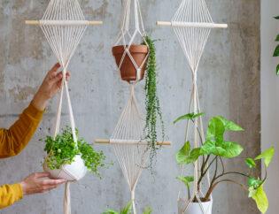 Δώστε τροπικό αέρα στο χώρο σας, προσθέτοντας φυτά κι αλλάξτε αμέσως διάθεση! 7