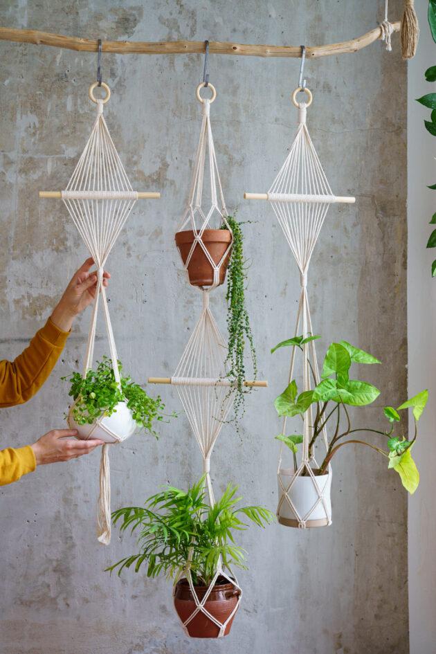 Δώστε τροπικό αέρα στο χώρο σας, προσθέτοντας φυτά κι αλλάξτε αμέσως διάθεση! 8