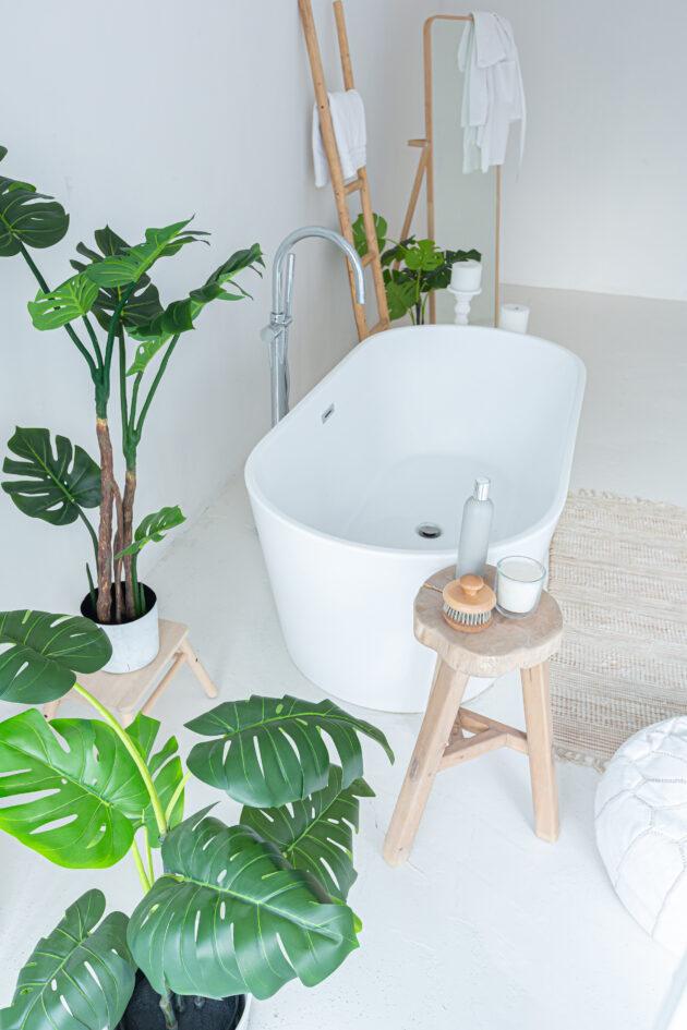 Φυτά ... για το μπάνιο σας 7