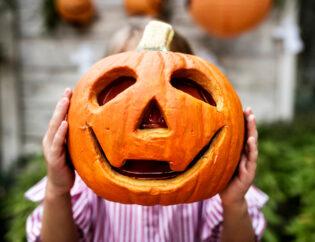 Halloween Κολοκυθοδημιουργήματα στον Κήπο 3