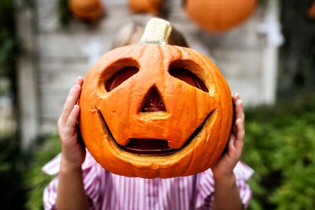 Halloween Κολοκυθοδημιουργήματα στον Κήπο 2